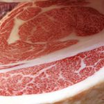 三反園・肉用牛振興対策全国協議会代表が斎藤農水副大臣に要請