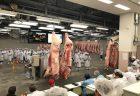[全国の食肉推定在庫・10月]全在庫は前年同月比14.6%増