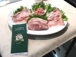 [USDA需給予測2月公表]牛豚鶏ともに生産増、価格も安価