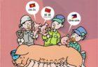 豚事協が海外技能実習生向け養豚便利冊子、3カ国語で作成
