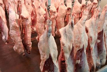 [牛肉マーケット]昨年同時期の在庫量と比べ5〜10倍に